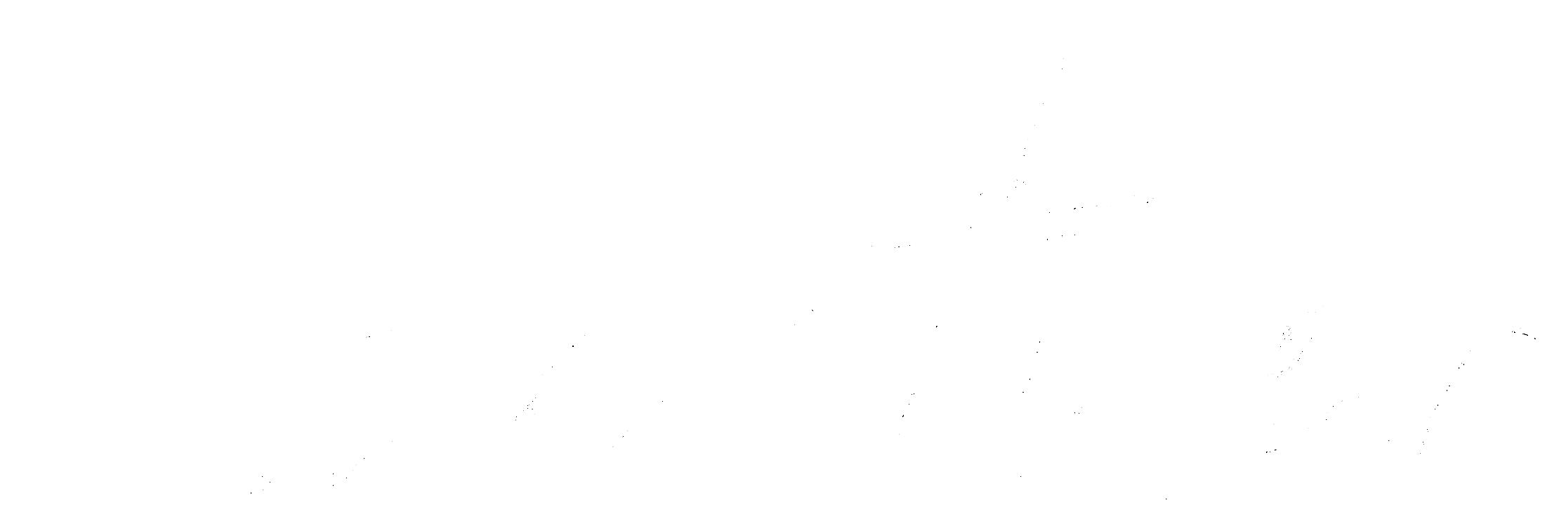 Logo_ weiß